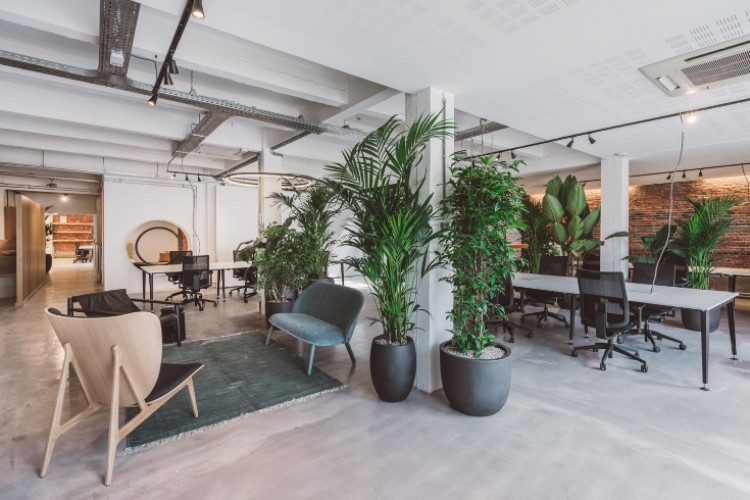 Kantoorruimte: Broederminstraat 9 in Antwerpen
