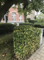 Flexibele bedrijfsruimte Ballingsweg, Gent